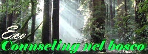 EcoCounseling nel bosco